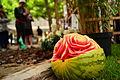 Blomsterfestival15 1.JPG