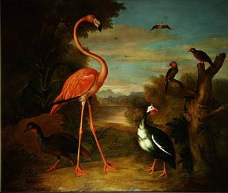 Jakob Bogdani - Flamingo and Other Birds in a Landscape