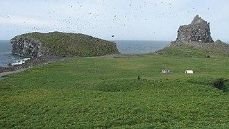 Bogoslof Island - Image: Bogoslof surface 2009