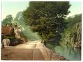Bonchurch Pond, II., Isle of Wight, England-LCCN2002708231.tif