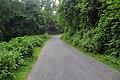 Botanical Garden Road, near SRDI (02).jpg