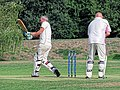 Botany Bay CC v Rosaneri CC at Botany Bay, Enfield, London 33.jpg