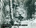 Bougainville USMC Photo No. 1-12 (21412037678).jpg