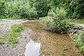 Brevon River 02.jpg