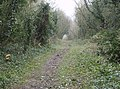 Bridleway near Lower Green - geograph.org.uk - 345850.jpg