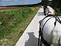 Bridleway to Stoke Farm - geograph.org.uk - 892169.jpg