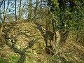 Burg Fürstenberg (Höingen) Mauerreste.JPG