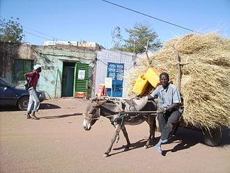 Dori, Burkina Faso - A farmer on the streets of Dori