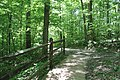 ButterMilk Falls Home of Mr. Rodgers - panoramio (29).jpg