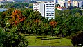 Bydgoszcz widok miasta z mego mieszkania - panoramio (1).jpg