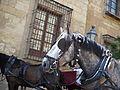 Córdoba (16507318454).jpg