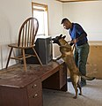 CBP Canine Training Facility El Paso Texas (28305810802).jpg