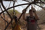 CJTF-HOA members volunteer time, effort to African Wildlife 120219-F-KZ428-090.jpg