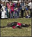 Caboolture Medieval Festival-60 (14795030890).jpg