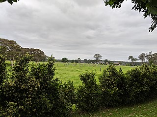 Cambewarra, New South Wales Town in New South Wales, Australia