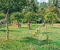 Camille Pissarro - Le jardin à Éragny.jpg