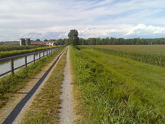 Province of Cremona - Typical lombard countryside with corn fields in Soresina.