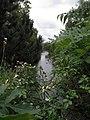 Canal du Midi (Toulouse) (1).jpg