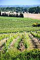 Cannet (Gers) Vignoble de l'AOC Béarn.JPG