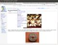 Captura de tela-Budismo-Meditação - Wikilivros - Minefield.png