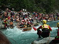 Carton rapid race 2013 - n227.jpg