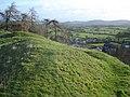 Castle earthworks at New Radnor - geograph.org.uk - 680407.jpg