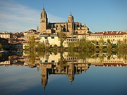 The Cathedral of Salamanca and its reflection