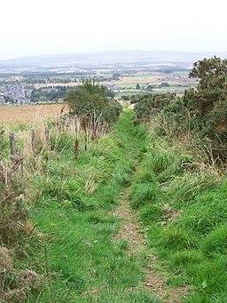 Cateran Trail near Alyth - geograph.org.uk - 1556017