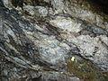 Catpund Quarry, Shetland - geograph.org.uk - 226214.jpg