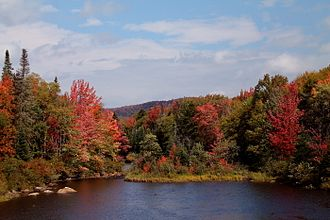 Cedar River (New York) - Cedar River Flow in the fall