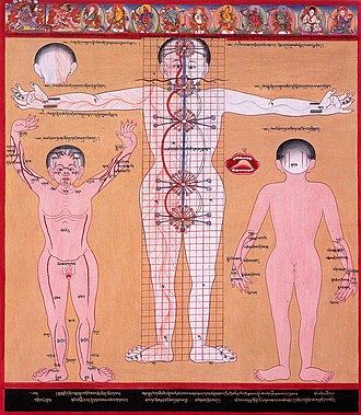 Chakra - A Tibetan illustration of the subtle body showing the central channel and two side channels as well as five chakras.