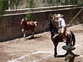 Charreada en El Sabinal, Salto de los Salado, Aguascalientes 30.JPG