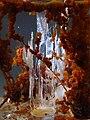 Chemical garden 9156 Nevit cr.jpg