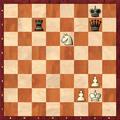 Chess-springergabel.PNG