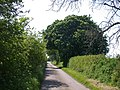 Chestnut tunnel - geograph.org.uk - 792681.jpg