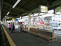 Chichibu Station platform 20080622.jpg