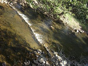 Chinnar River - Chinnar river from SH 17  border bridge between Tamil Nadu and kerala