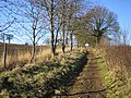 Chipperfield, Bridleway between Hunton Bridge and Bucks Hill - geograph.org.uk - 114004.jpg