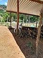 Chivita.Guayameo, Gro.jpg