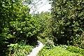 Christchurch Botanic Gardens kz20.jpg