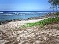 Chulu Beach - Tinian - panoramio - kajikawa (3).jpg