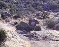 Cibola National Forest- Sandia ABQ Mt New Mexico.jpg