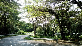 Close curve at Bicol Natural Park Maharlika Highway.jpg