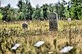 Cmentarz żydowski 0058.jpg