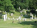 Cold Springs Cemetery View Jun 09.JPG