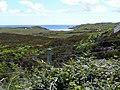 Coll moorland - geograph.org.uk - 869333.jpg