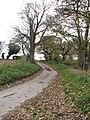 Common Corner Road - geograph.org.uk - 1048800.jpg