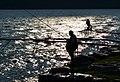 Como Fishermen (43429002).jpeg