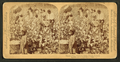 Cotton is king - A plantation scene, Georgia, from Robert N. Dennis collection of stereoscopic views.png