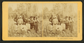 Cotton pickers, Florida, by Kilburn Brothers 2.png